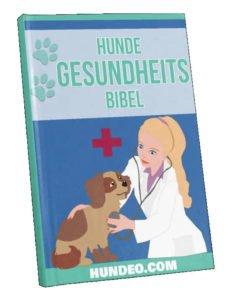 Hunde-Gesundheits-Bibel